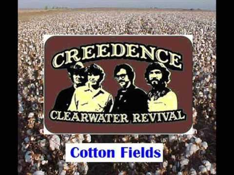 CCR - Cotton Fields